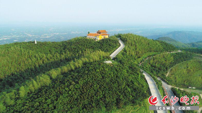 天华山景区位于长沙县青山铺镇,现存数百亩保护完好的原始次森林