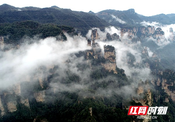 3月5日,雨后的湖南张家界武陵源风景区十里画廊,连绵峰林在云雾的点缀