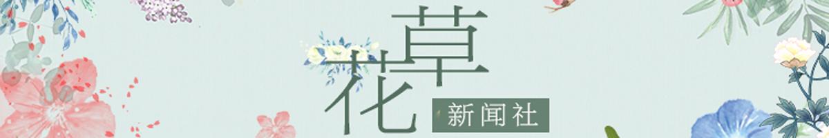 """花草新闻社,网罗一手""""花讯""""!"""