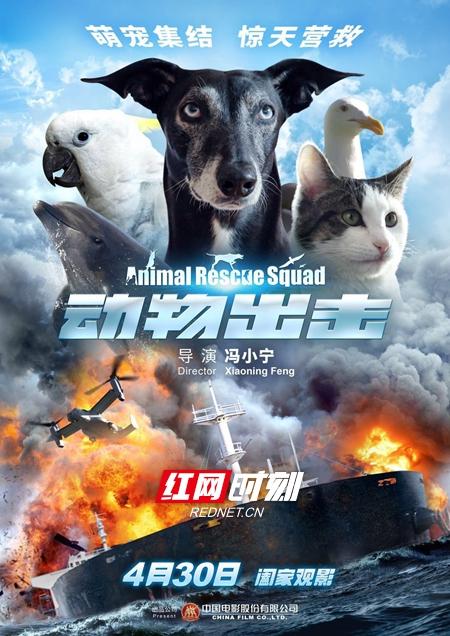 《动物出击》电影原声音乐上线 跟着萌宠去冒险