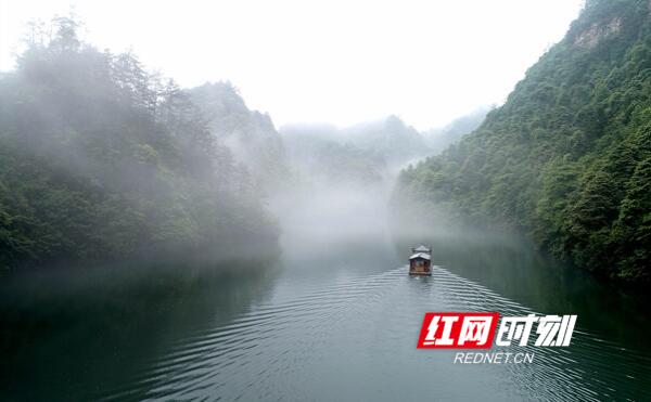 张家界:雾漫宝峰湖 水墨山水画