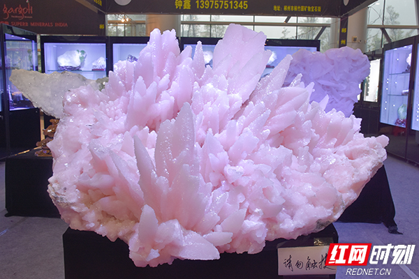 这块奇特的粉色石头,您有见过吗?