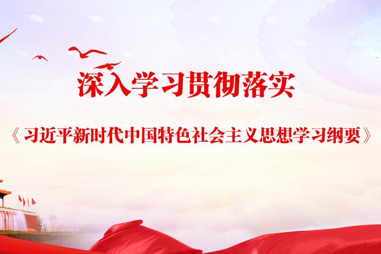 深入学习贯彻落实《习近平新时代中国特色社会主义思想学习纲要》