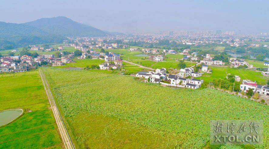 """飞""""阅""""美丽乡村丨生态农业 美不胜收"""