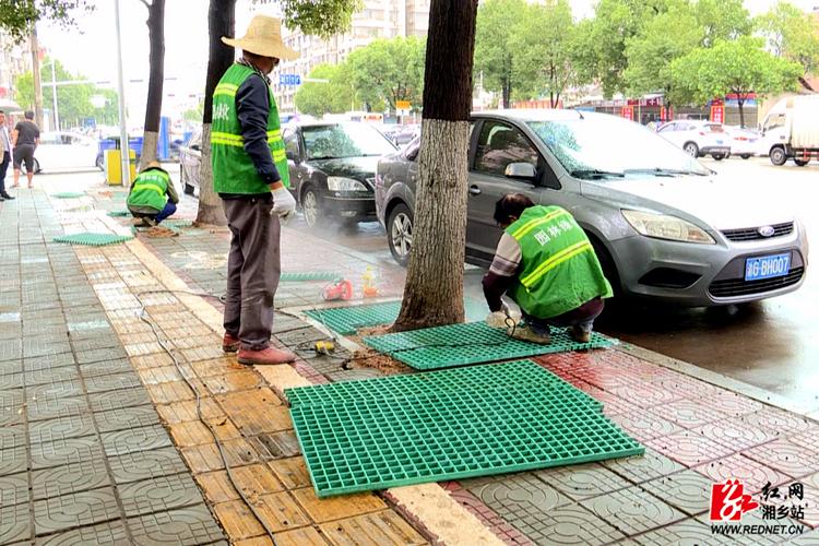 【文明创建】园林时时彩服务 中心为行道树安装树篦子 提升道路景观品质