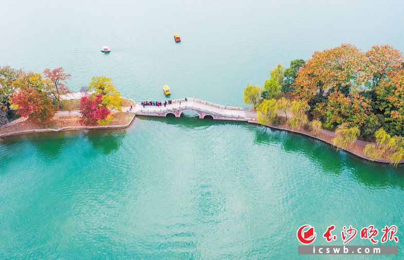 色彩缤纷的年嘉湖秋岛。