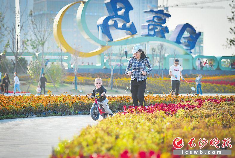↓月亮岛公园精彩蝶变,体育主题片区向市民开放,游客在花丛中自由奔跑,感受美好时光。