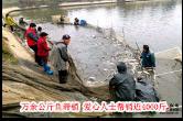 12月3日湘乡手机报