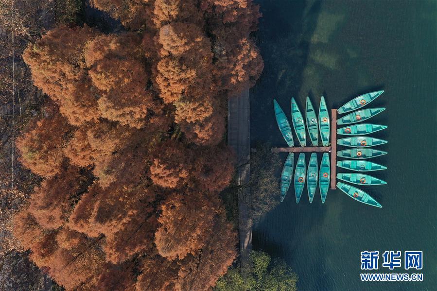 冬日杭州西湖色彩斑斓