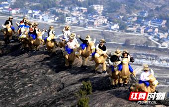 平江石牛寨举办趣味登山节