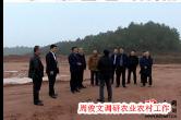 12月25日湘乡手机报