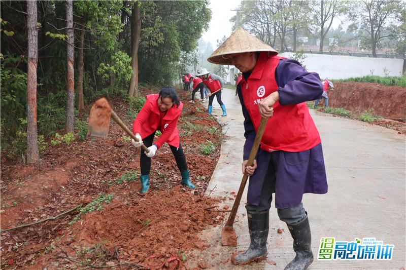 植树护绿,大荆镇大荆村新时代文明志愿者共建秀美家园
