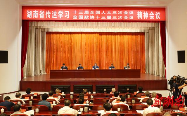 湖南领导干部传达学习全国两会精神