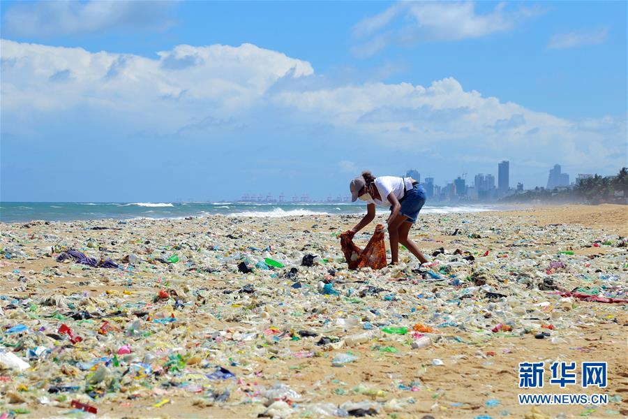 世界环境日:斯里兰卡志愿者清理海滩垃圾