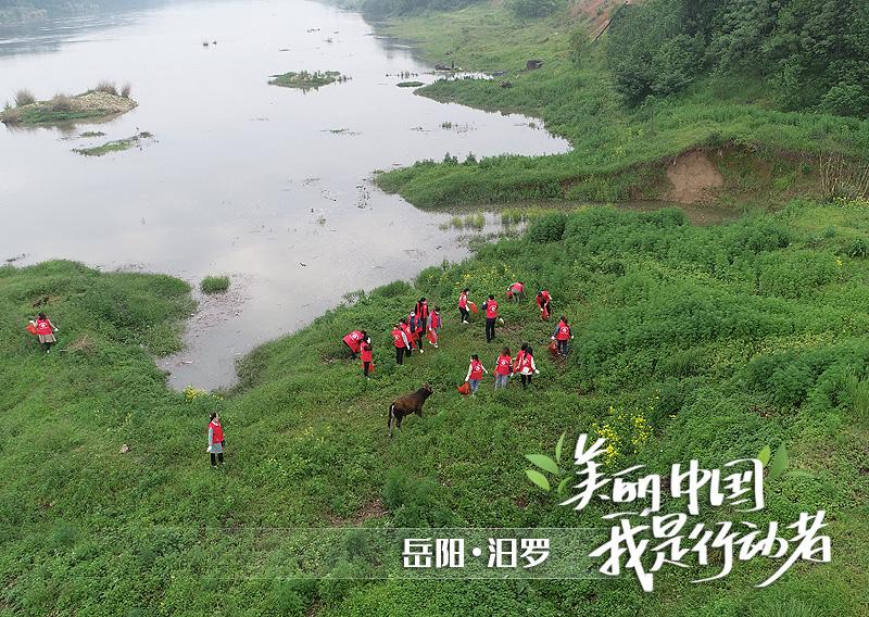 海报丨世界环境日,湖南志愿者喊你一起来行动!