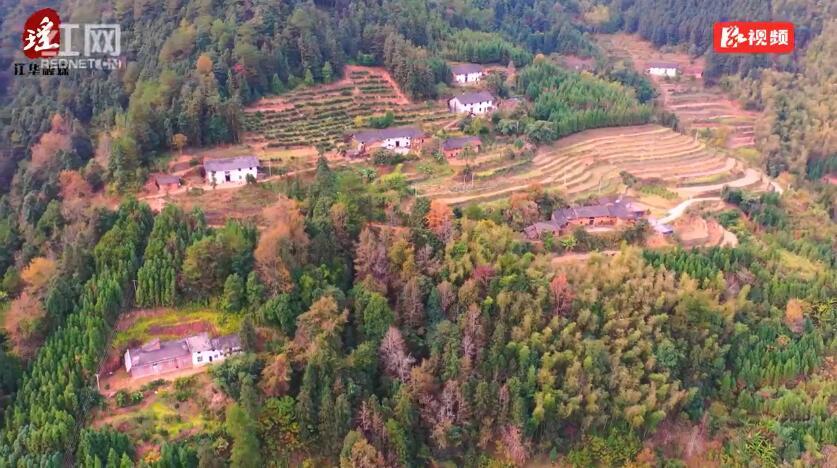江华庄稼村:漫山红叶 层林尽染