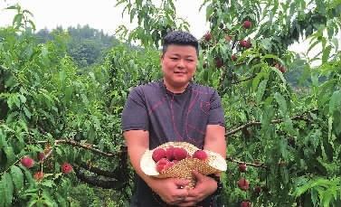 长沙进入时鲜水果采摘季,早熟桃已上市