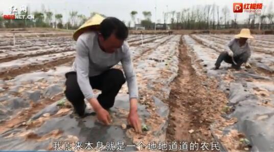益阳新时代农民打卡上班在家门口