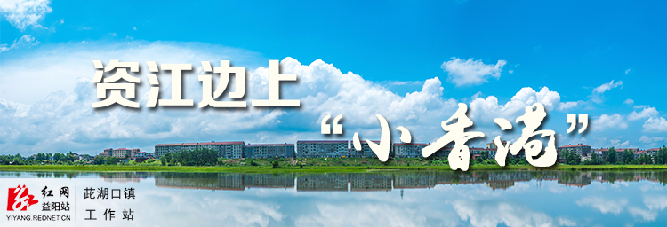时刻专题 | 红网时刻资阳区茈湖口镇工作站