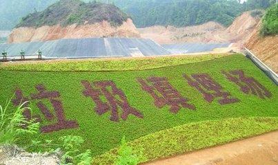 桃江县环卫所垃圾填埋场处理项目成交公告