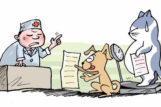 家有宠物,要注意哪些健康隐患?
