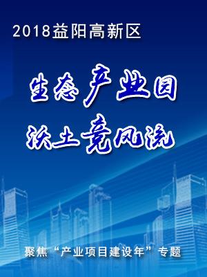 益阳高新区产业项目年专题