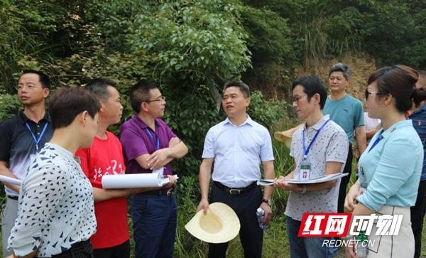 王永红到桃源古镇项目地考察调研项目进展情况