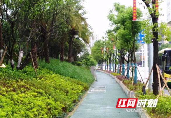 """嘉禾县:""""十亿园林""""构建""""天然氧吧"""""""