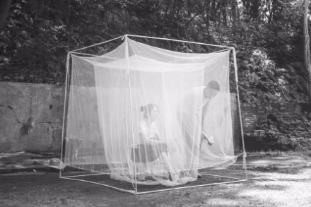 长沙妹子以身诱蚊探敌情 与蚊子打交道13年