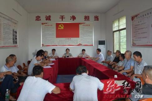 东安:张波为岭观村党员上党课