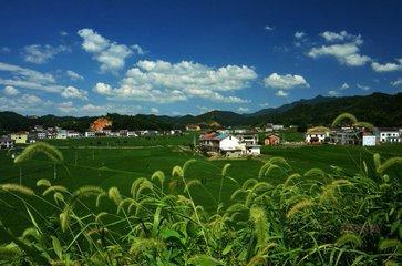 论道永州丨浙江美丽乡村建设对永州乡村振兴的借鉴