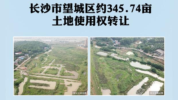 长沙市望城区约345.74亩土地使用权转让