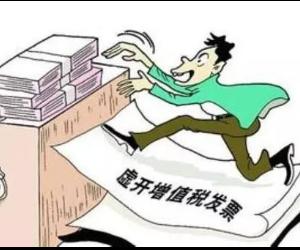 娄底告破湖南第一起境外人员涉嫌虚开增值税专用发票案