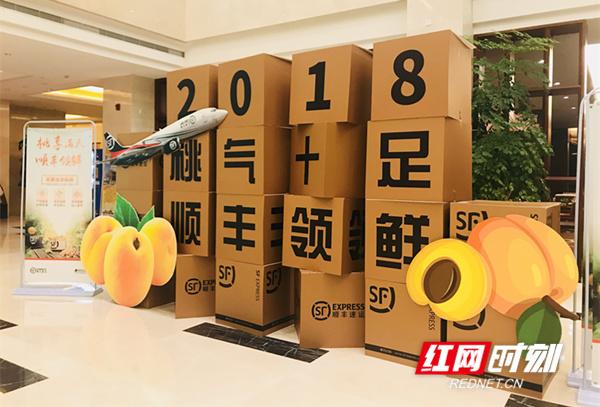 电商云集桂东为黄桃代言 郴州市青年电商创意销售大赛启动