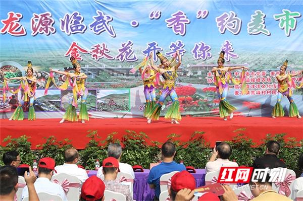 """龙源临武·""""香""""约麦市 临武县麦市镇举行首届美食文化旅游节"""