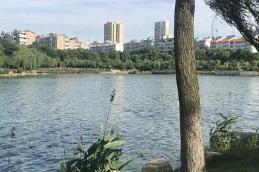 岳阳:连战4个月 年底前打造树绿花香王家河
