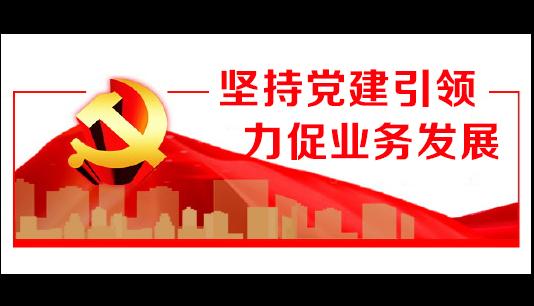 湘西长行村镇银行:坚持党建引领 力促业务发展