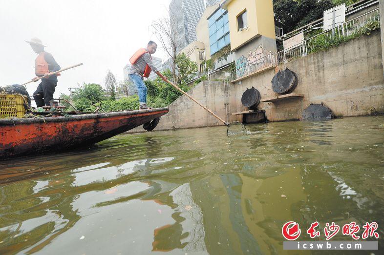 """18位""""清道夫""""每日对湘江长沙城区段22公里的水面进行清理"""