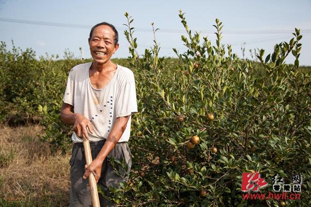周隆国,石山脚乡和谐村三组贫困户,2016年利用20多亩山地入股天惠油茶开发有限公司,农闲时节还可以在天惠油茶公司打短工,除草、嫁接、中耕、采摘、施肥等,一年下来总收入约4万余元。天惠油茶开发有限公司招收周边村78户贫困户以土地流转入股,每年该公司以全年纯收入的15%给贫困户分红,同时让贫困户在公司务工赚钱。(陈斌 摄)