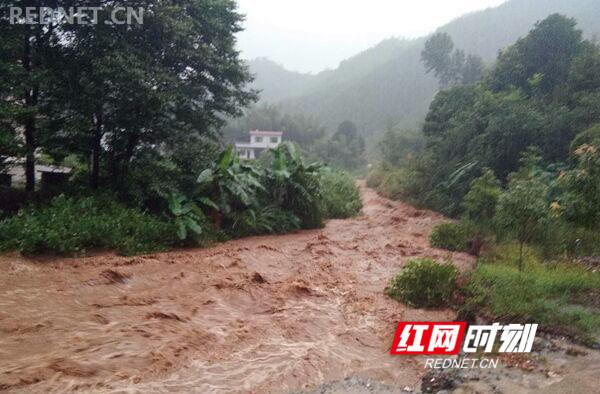 强降雨致使金洞8000人受灾 救灾工作高效有序进行