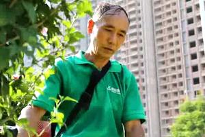 """【高温下的坚守】园林工人:烈日下的城市 """"护绿使者""""(视频)"""
