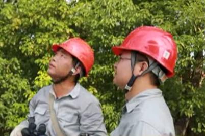 """【高温下的坚守】电力巡线工:不畏""""烤""""验巡线忙(视频)"""
