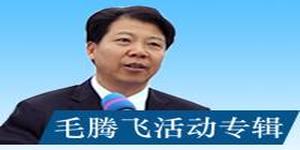 毛腾飞调度宣传系统、政法系统巡视整改工作