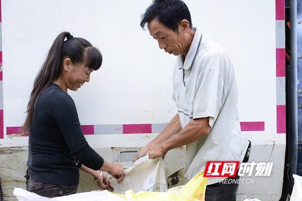 看着颗粒饱满的稻子,喜悦之情溢满了村民面容。