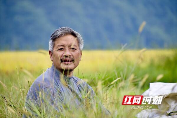 在一片金黄中,正中途休息的村民喜笑颜开。