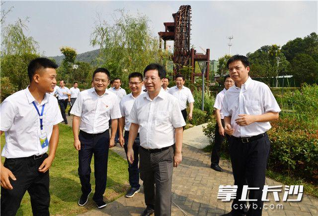 胡衡华调研岳麓区时强调 在推动高质量发展中放大优势提升效益