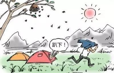 秋季马蜂蜇人致伤致死频发,这些应对办法你要知道