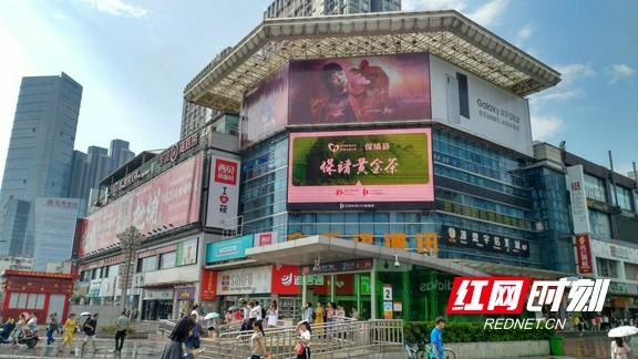 """""""红网精准扶贫品推公益行动""""大力宣传保靖黄金茶"""
