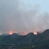 中方县铜鼎铜湾交界处发生一起山林火灾 干群协力扑灭山火