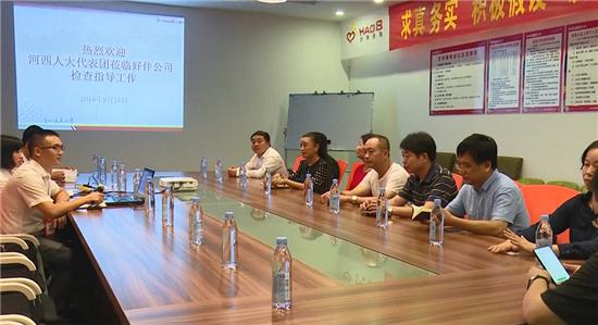 河西街道人大工委组织代表开展执法监督检查